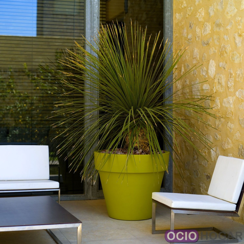 comprar maceta vondom online. Black Bedroom Furniture Sets. Home Design Ideas
